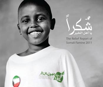 somalReport2011