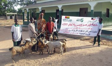 Directaid مشاريع التنمية Development Goat -1 1