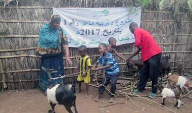 Directaid مشاريع التنمية Development Goat -1 8