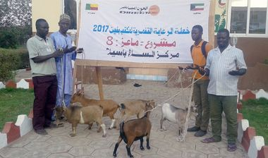 Directaid مشاريع التنمية Development Goat -1 16