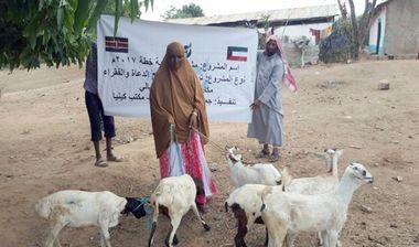 Directaid مشاريع التنمية Development Goat -1 12