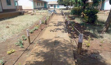 Directaid مشاريع التنمية Afforestation Orphanage 1