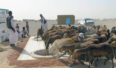Directaid Water Projects Dhul Hijjah surface Wells 2 6