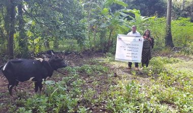 Directaid development Animal Production Project - For Poor Families 4 3