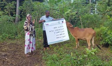 Directaid مشاريع التنمية Cows Project - Poor Family-3 4