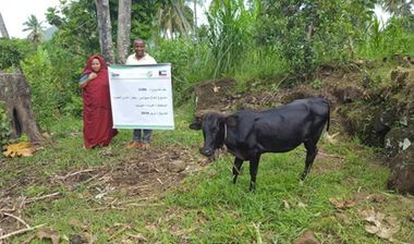 Directaid  Cows Project - Poor Family-6 1
