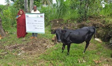 Directaid development Cows Project - Poor Family-6 3