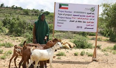 Directaid مشاريع التنمية Project Animal-Goat-for Poor Family-1 1