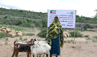 Directaid مشاريع التنمية Project Animal-Goat-for Poor Family-1 2