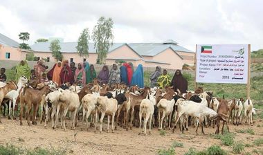 Directaid development Project Animal-Goat-for Poor Family-1 7