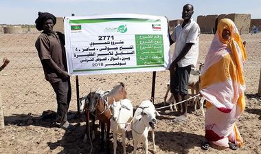 Directaid مشاريع التنمية Al-Sanabel Project - Goat Production-4 1