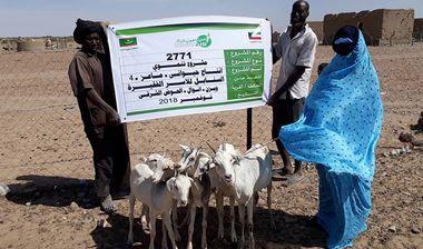 Directaid development Al-Sanabel Project - Goat Production-4 1