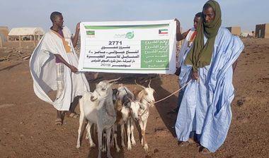 Directaid development Al-Sanabel Project - Goat Production-4 4