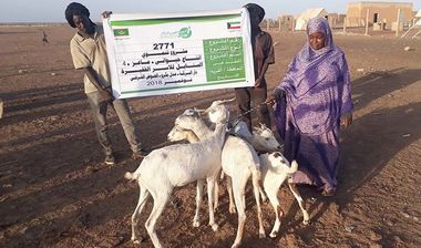 Directaid مشاريع التنمية Al-Sanabel Project - Goat Production-4 6