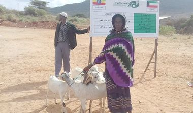 Directaid مشاريع التنمية Project Animal-Goat-for Poor Family-3 1