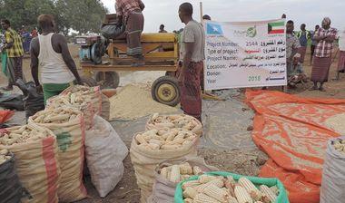 Directaid مشاريع التنمية Al-Duhaa Farm 6