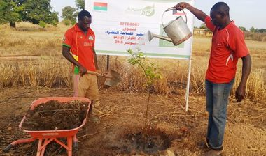 Directaid مشاريع التنمية Green Yard Project 2