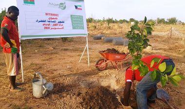Directaid مشاريع التنمية Green Yard Project 3
