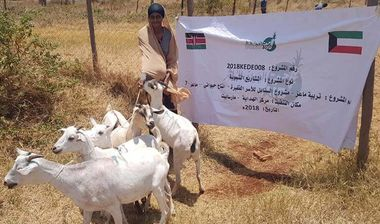 Directaid مشاريع التنمية Al-Sanabel Project - Goat Production-7 3