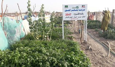 Directaid مشاريع التنمية Bashayir Al-Oeawn Farm 10