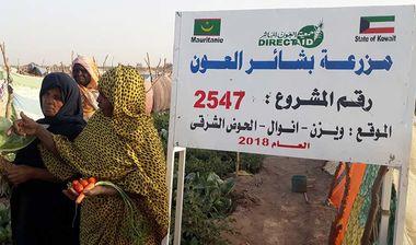 Directaid مشاريع التنمية Bashayir Al-Oeawn Farm 1