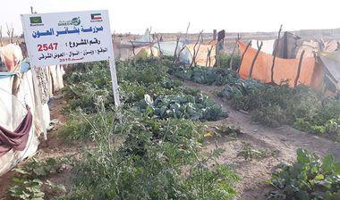 Directaid development Bashayir Al-Oeawn Farm 2