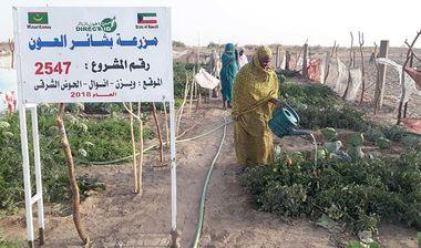 Directaid مشاريع التنمية Bashayir Al-Oeawn Farm 3