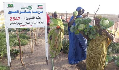 Directaid مشاريع التنمية Bashayir Al-Oeawn Farm 4