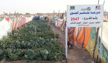 Directaid مشاريع التنمية Bashayir Al-Oeawn Farm 7