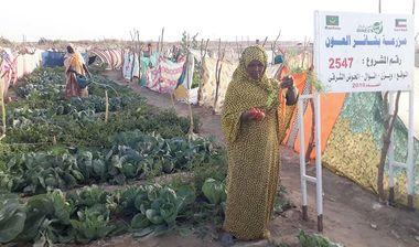 Directaid مشاريع التنمية Bashayir Al-Oeawn Farm 8