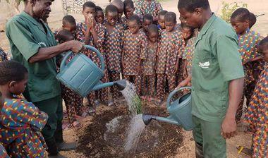 Directaid مشاريع التنمية Green Yard Project -2nd 2