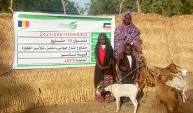 Directaid مشاريع التنمية Project Animal-Goat-for Poor Family-2 2