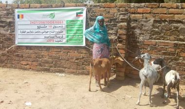 Directaid مشاريع التنمية Project Animal-Goat-for Poor Family-2 4