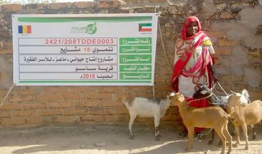 Directaid مشاريع التنمية Project Animal-Goat-for Poor Family-2 5