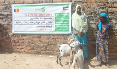 Directaid مشاريع التنمية Project Animal-Goat-for Poor Family-2 7