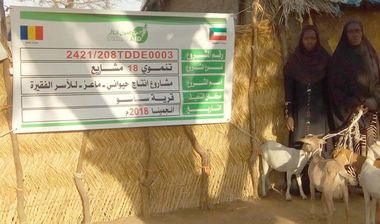 Directaid مشاريع التنمية Project Animal-Goat-for Poor Family-2 8