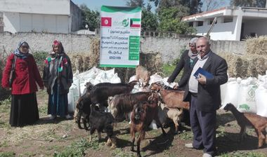 Directaid مشاريع التنمية Al-Maawn Project - Raising Goats - 1 2
