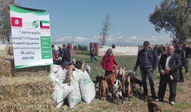 Directaid مشاريع التنمية Al-Maawn Project - Raising Goats - 1 3