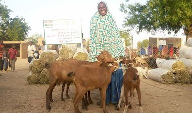 Directaid مشاريع التنمية Al-Maawn Project - Raising Goats - 3 1