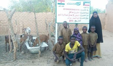 Directaid مشاريع التنمية Al-Maawn Project - Raising Goats - 3 2