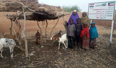 Directaid مشاريع التنمية Al-Maawn Project - Raising Goats - 3 3