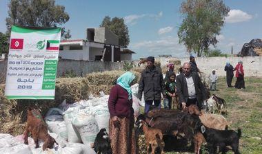 Directaid development Al-Sanabel Project - Goat Production-8 1