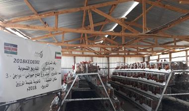 Directaid مشاريع التنمية Animal Production - Poultry -3 10