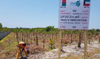 Directaid development Al-Amal Center Afforestation 7