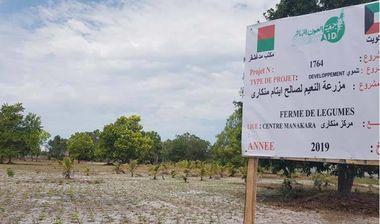 Directaid مشاريع التنمية Al-Naeim Farm 2