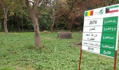 Directaid مشاريع التنمية Almjd Al-Khadra' Farm 1