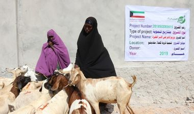 Directaid development Al-Sanabel Project - Goat Production-2 7