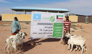 Directaid مشاريع التنمية Al-Khairat Project-15 1