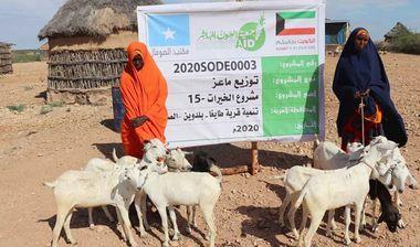 Directaid مشاريع التنمية Al-Khairat Project-15 9