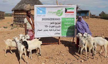 Directaid مشاريع التنمية Al-Khairat Project-15 11